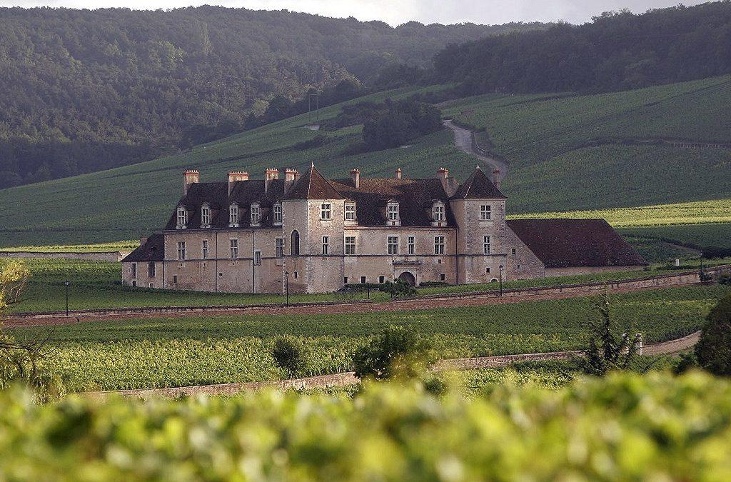 El Viñedo de Côte d'Or en Borgoña